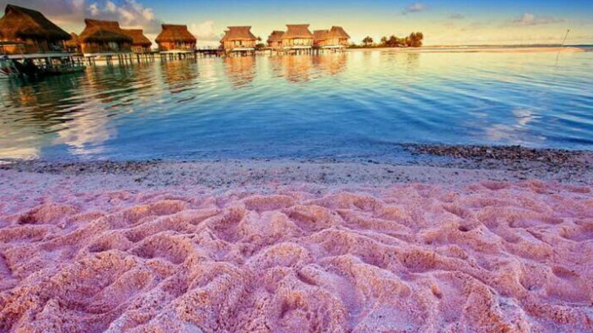 Playas-Playa-Rosada-Bahamas
