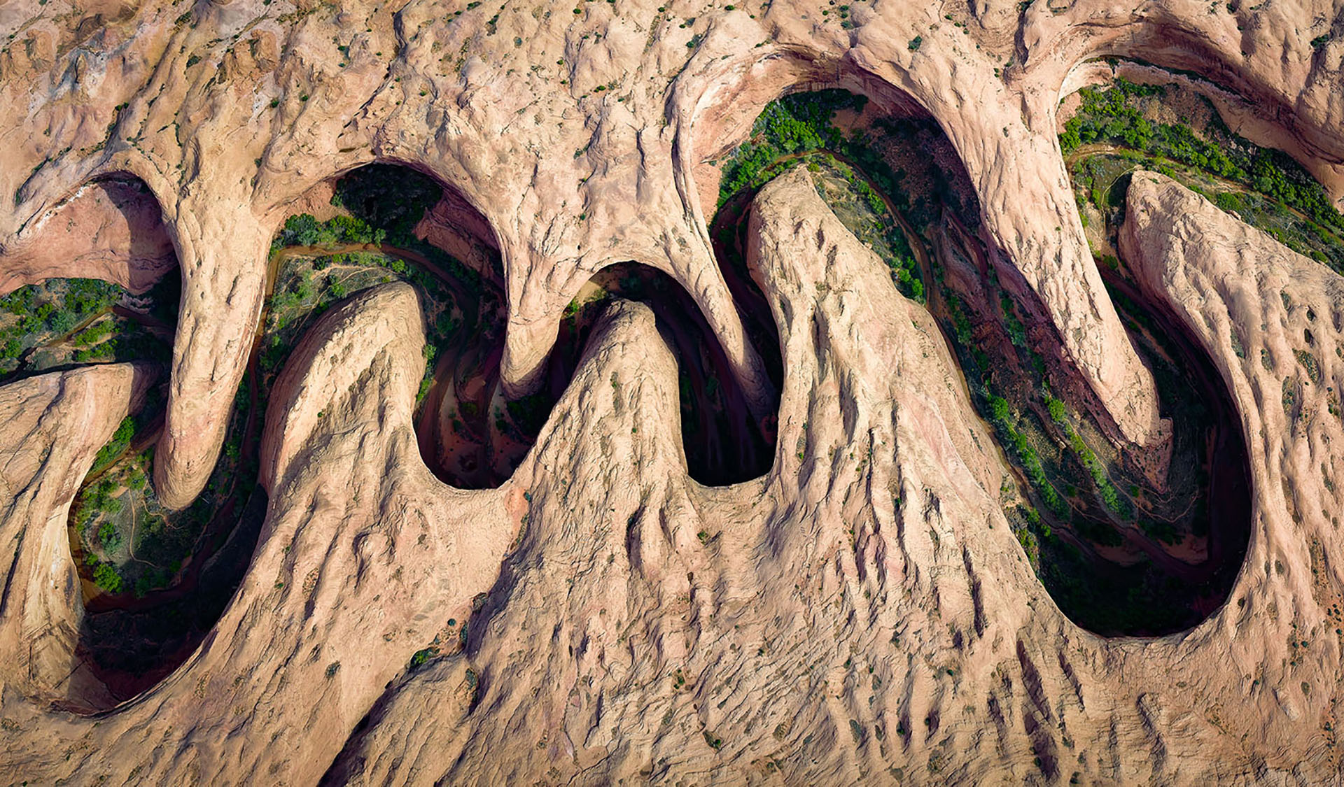 Utah's canyons are quite impressive as your walking through the bottom. But they are equally EXTRAORDINARY when viewed from above. On this image, you can see the many twists and turns this canyon has cut through the sandstone. The bottom of the canyon is full or riparian vegetation and is a whole different world from that above it.