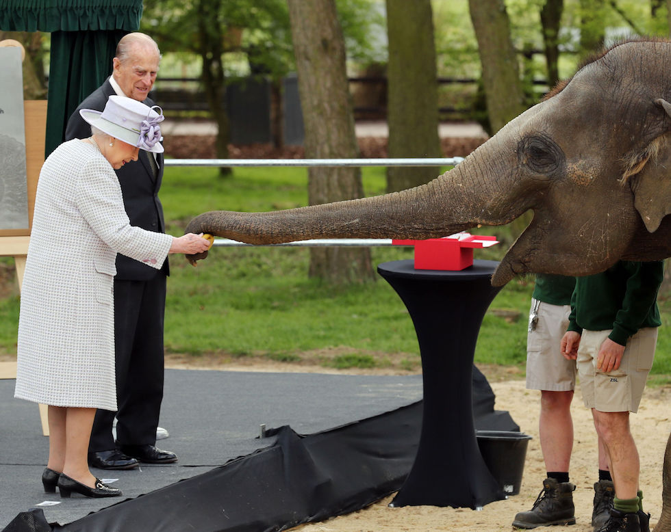 La regina Elisabetta con un elefante all'apertura di un nuovo centro per elefanti allo zoo ZSL Whipsnade, (Chris Radburn/PA Wire/LaPresse)