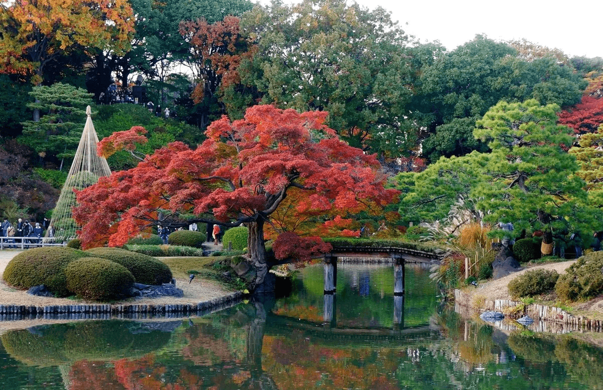 Okinawa-Japon